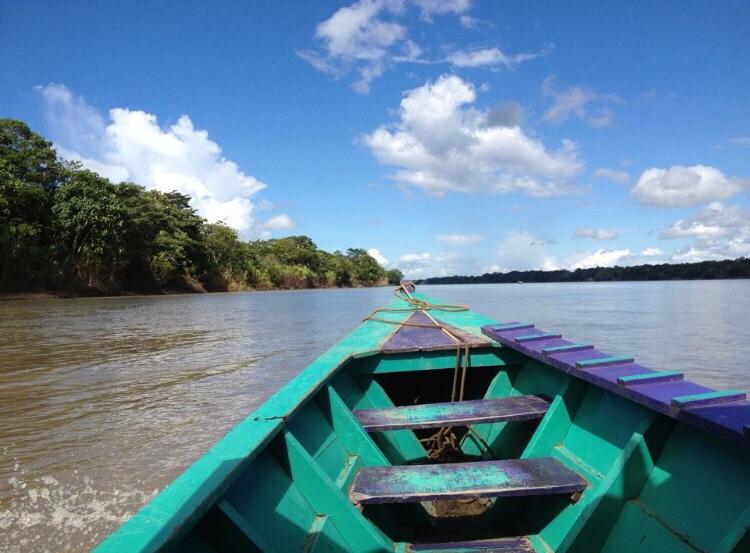 Selva amazónica sinbarreras